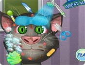 Talking Tom Great